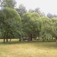 Снимок сделан в Парк Куопио (Финский парк) пользователем Dima S. 7/14/2013