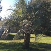 Photo taken at Homosassa, FL by Brian C. on 10/6/2013