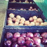 Photo taken at Roadrunner Park Farmers Market by David C. on 10/12/2013