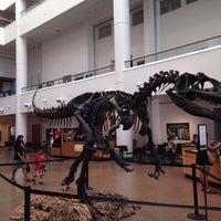 Снимок сделан в San Diego Natural History Museum пользователем Sri K. 7/6/2013