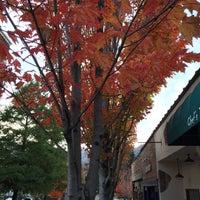 Photo taken at Waynesville, NC by Nicolle D. on 10/24/2015