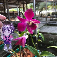 Photo taken at Orchid Farm by Shuji 하. on 3/25/2018