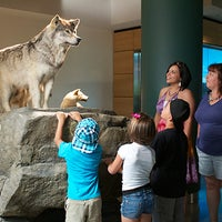 Photo taken at Mashantucket Pequot Museum and Research Center by Mashantucket Pequot Museum and Research Center on 8/2/2013