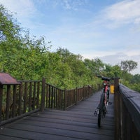Photo taken at Ekowisata Mangrove by Ainul Fuadi M. on 2/14/2017