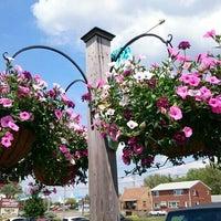 photo taken at white oak garden center by timothy b on 55 - White Oak Garden Center