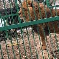 Photo taken at Зоокът by Sonya on 12/27/2016
