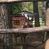 Photo taken at Зоокът by Sonya on 4/24/2016