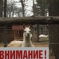 Photo taken at Зоокът by Sonya on 12/25/2016