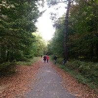 Photo taken at ıssız bahçeköy ormanları by Tevfik P. on 10/19/2014