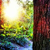 Das Foto wurde bei Morningside Nature Preserve von Michael A. am 4/7/2012 aufgenommen