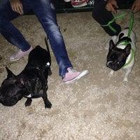 Photo taken at Πάρκο για σκυλιά by Dimitra D. on 10/25/2013