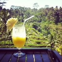 Снимок сделан в Tegallalang Rice Terraces пользователем Kittiphong B. 9/15/2012