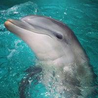 Photo taken at SeaWorld San Antonio by Jake G. on 6/30/2013