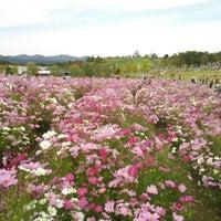 Photo taken at 国営越後丘陵公園 by y_ita on 10/14/2012