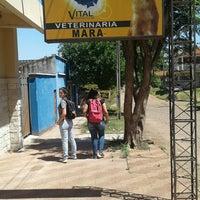 Foto tomada en Veterinaria Mara por Belen O. el 9/26/2016
