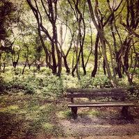 Photo taken at Parque Villa-Lobos by Everton R. on 7/13/2013