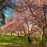 Photo taken at Monet's Garden at The New York Botanical Garden by Hunter on 4/25/2015