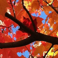 Photo taken at Barrington Area Library by Dawn K C. on 10/12/2012