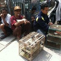 Photo taken at Pasar Burung Muntilan by nans h. on 3/2/2014
