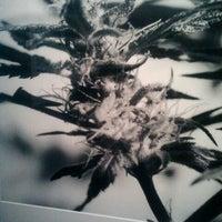 Photo taken at S.M.A.K. | Stedelijk Museum voor Actuele Kunst by Karel J. on 11/29/2012