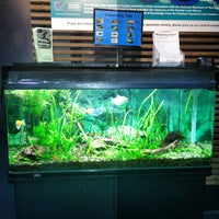 Photo taken at National Aquarium of New Zealand by Alexander N. on 5/8/2015