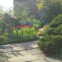 Foto scattata a Clinton Community Garden da Anthony P. il 4/21/2016