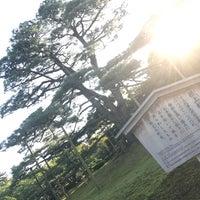 Photo taken at Neagarinomatsu Pine by りょんりょん on 8/30/2017