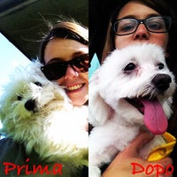 Photo taken at Cologne by Tiziana on 5/2/2014