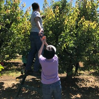 Photo taken at Bacchini's Fruit Tree by Annie L. on 5/12/2018