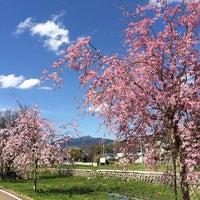 4/5/2014에 Atsushi W.님이 小田城跡에서 찍은 사진