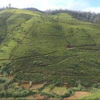 Photo taken at Glenloch Tea Factory by Karaliene on 12/6/2012