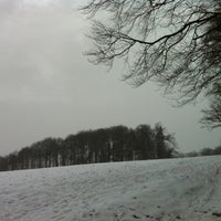 Photo taken at Käferberg Wald by Eva on 1/20/2013