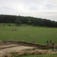 3/31/2013 tarihinde Özlem A.ziyaretçi tarafından Sarnıç'de çekilen fotoğraf