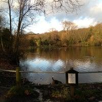 1/1/2013 tarihinde Paoloziyaretçi tarafından Hampstead Heath Ponds'de çekilen fotoğraf