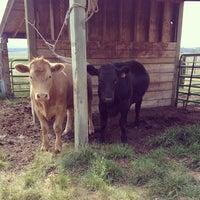 Photo taken at The Shepard Farm by Mackynzie W. on 8/14/2013