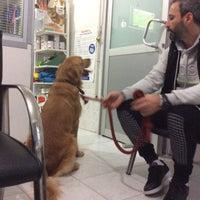 Photo taken at Atakoy veteriner poliklinigi by Erkan S. on 11/13/2016