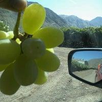 Photo taken at Valle De Copiapo. Fundo Apacheta. by Rodrigo a. on 3/8/2013