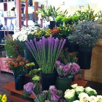 Photo taken at Saville Flowers Inc by leesseung on 10/24/2012