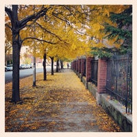 Photo taken at Bucktown by ciara s. on 10/24/2012