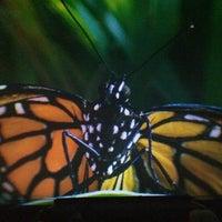 Das Foto wurde bei Fleet Science Center von Marta S. am 12/28/2012 aufgenommen