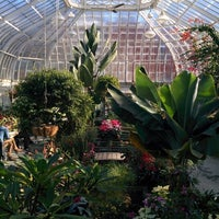 Photo taken at Westmount Greenhouse by Darcy on 1/25/2015