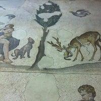 10/14/2012 tarihinde Gülcanziyaretçi tarafından Büyük Saray Mozaikleri Müzesi'de çekilen fotoğraf
