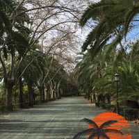 Photo taken at Jardín Botánico La Concepción by Yasser on 3/5/2017
