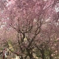 Photo taken at 東山動植物園 お花畑 by Sachi Y. on 4/1/2018