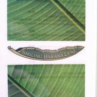 Photo taken at Smiling Banana Leaf by Jennifer J M. on 3/30/2013