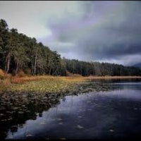 Photo taken at Lake Abant by Selin Nalcakan on 11/25/2012