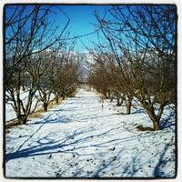 Photo taken at Αρνισσα by Jorgo I. on 12/12/2012