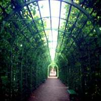 Foto scattata a Summer Garden da Aleksandra🐼 G. il 7/3/2013