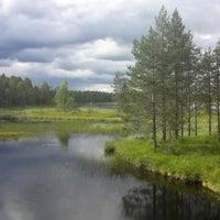 Photo taken at Tiilikkajarvi National Park by Katri K. on 7/16/2013