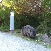 Photo taken at Wilsons Promontory National Park by walwal on 4/11/2013